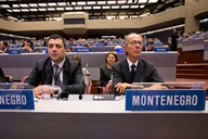 51 Series of meetings of the member states of the World Intellectual Property Organization